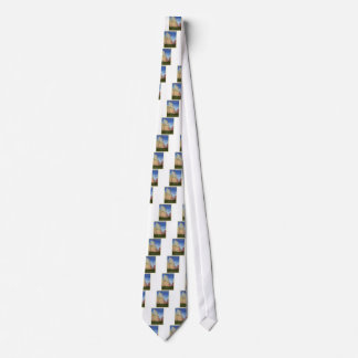 Vintage Zion Park Tie