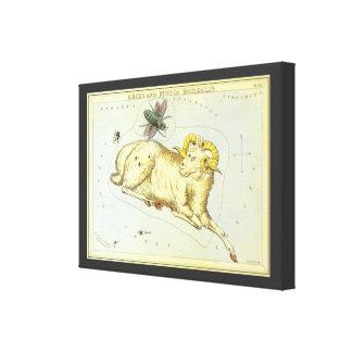 Vintage Zodiac, Astrology Aries Ram Constellation Gallery Wrap Canvas
