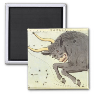 Vintage Zodiac Astrology Taurus Bull Constellation Square Magnet