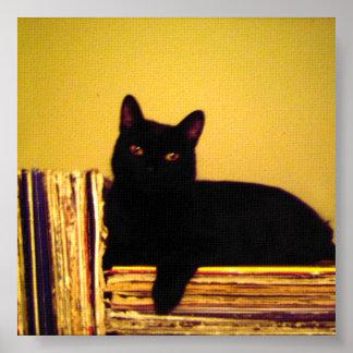 Vinyl Kitty Posters