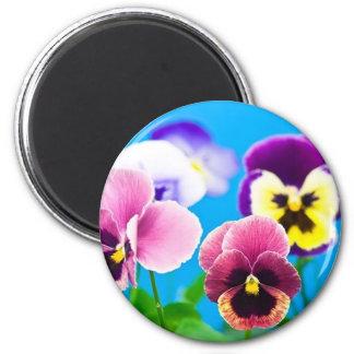 Viola flowers Magnet