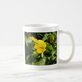Viola 'Swiss Giant Yellow' Coffee Mug