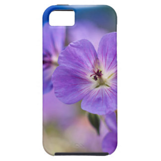 Violet Case For The iPhone 5