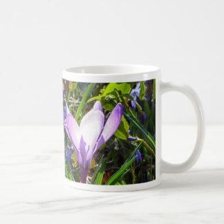 Violet crocuses 02.0, spring greetings coffee mug