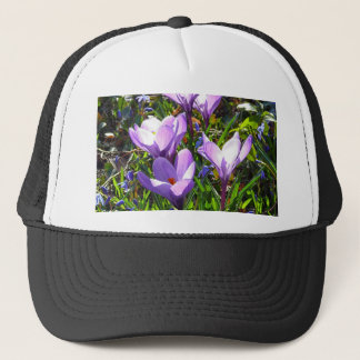Violet crocuses 02.0, spring greetings trucker hat