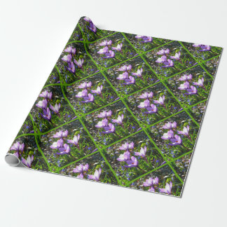 Violet crocuses 4.0, spring greetings wrapping paper