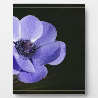Violet flower plaque