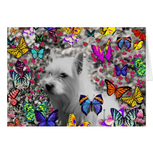 Violet in Butterflies – White Westie Dog Cards