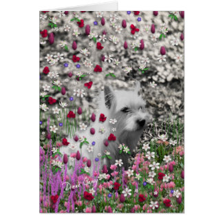 Violet in Flowers – White Westie Dog Cards