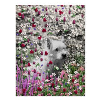 Violet in Flowers – White Westie Dog Postcard
