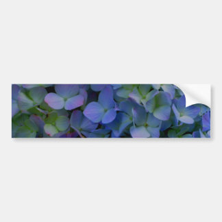 Violet purple hydrangeas bumper sticker
