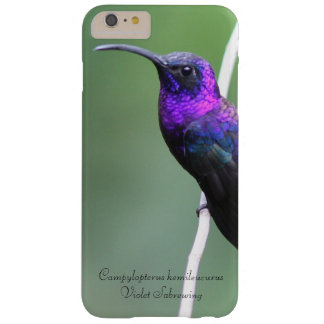 Violet Sabrewing Barely There iPhone 6 Plus Case
