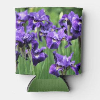 Violet Siberian Iris, Ceasar's Brother Can Cooler