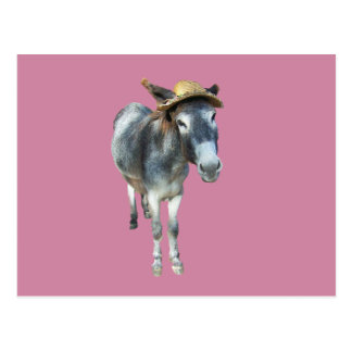 Violet the Donkey in Straw Hat with Flowers Postcard