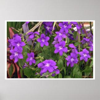 Violet Weeds Poster