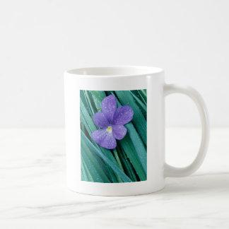 Violets R Blue Coffee Mugs