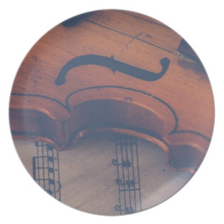 Violin Music Instrument Classic Musical Instrument Plate