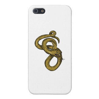 Viper Coiled Ready To Pounce Drawing iPhone 5/5S Cases