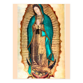 Virgen de Guadalupe Postcard