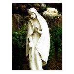 Virgin Mary Garden Statue Postcard