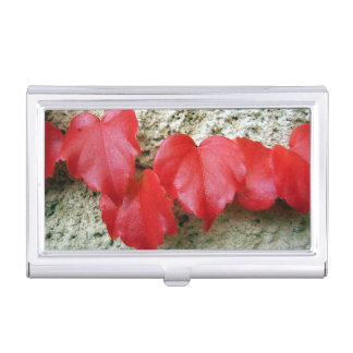 Virginia Creeper Leaves Business Card Holder