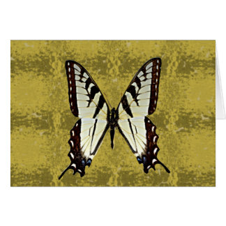 Virginia Eastern Tiger Swallowtail(AL,DE,GA,SC,VA) Card