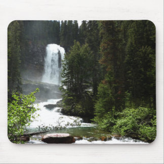 Virginia Falls at Glacier National Park Mouse Pad