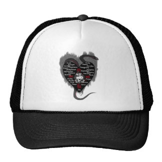 virtues mesh hats