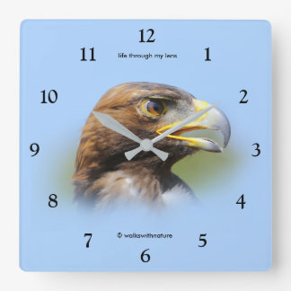 Vision of a Beautiful Young Golden Eagle Square Wall Clock