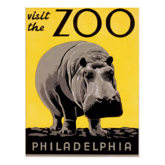 Visit the Zoo Postcard