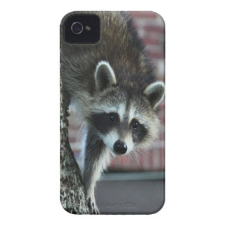 Visitor iPhone 4 Cover