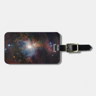 VISTA's infrared view of the Orion Nebula Luggage Tag