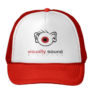 Visually Sound Pictures LLC Hat