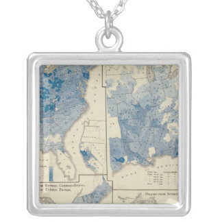 Vital statistics, United States census Silver Plated Necklace