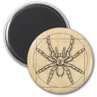 Vitruvian Arachnid Magnet