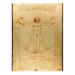 Vitruvian Man - Leonardo da Vinci Post Card
