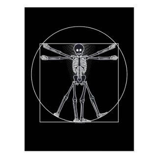 Vitruvian Skeleton Dark Postcard