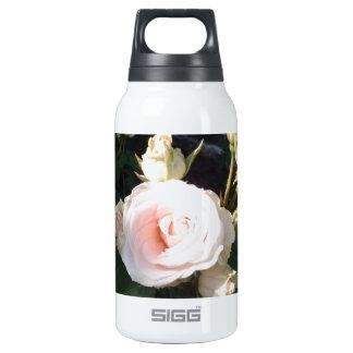 Vivaldi Hybrid Tea Rose 0.3L Insulated SIGG Thermos Water Bottle