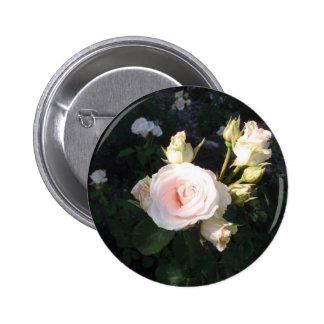 Vivaldi Hybrid Tea Rose Button