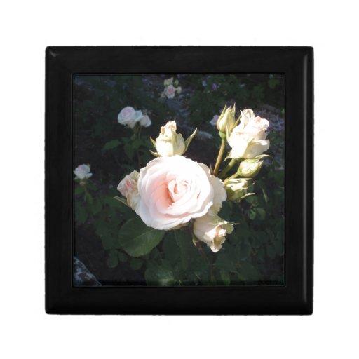 Vivaldi Hybrid Tea Rose Keepsake Boxes
