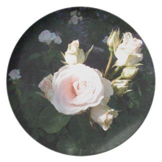Vivaldi Hybrid Tea Rose Party Plates