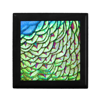 Vivid green breast feathers gift box