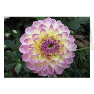 Vivid Lavender Creme Dahlia Greeting Card