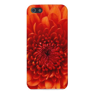 Vivid Orange Flower IPhone Case iPhone 5 Cover
