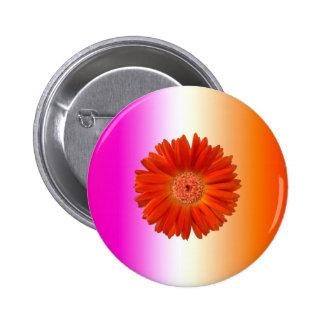 Vivid Orange Gerbera Daisy on Pink Orange Button