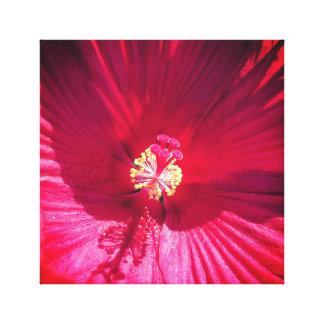 Vivid Red Flower Canvas Print