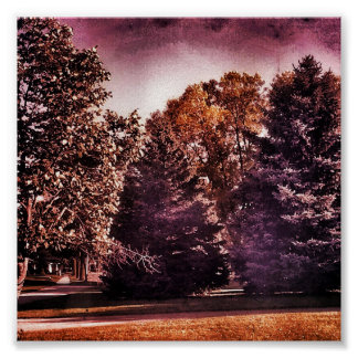 Vivid Spooky Purple Woods Poster