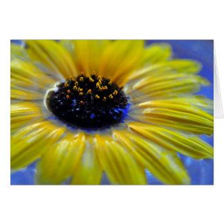 Vivid Sunflower Greeting Card