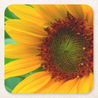 Vivid sunflower square paper coaster