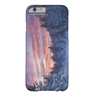 Vivid sunset paints the sky above wintery barely there iPhone 6 case